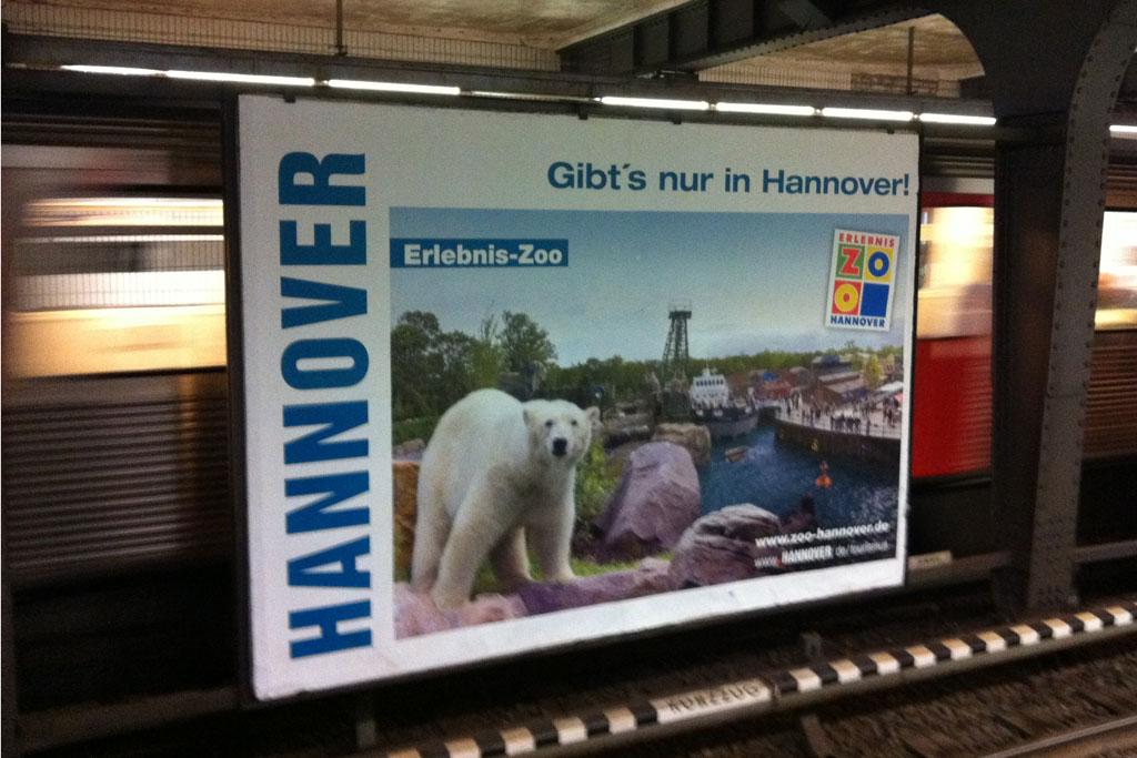 hannover-marketing-tourismus-zoo-hamburg-andres-lehmann