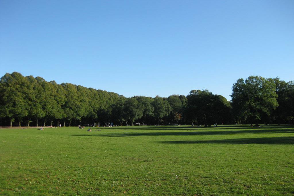 altonaer-stadtpark-wiese-sommer-andres-lehmann