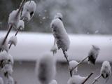 winter-luebeck-travemuende-maerz-klein-2013-andres-lehmann