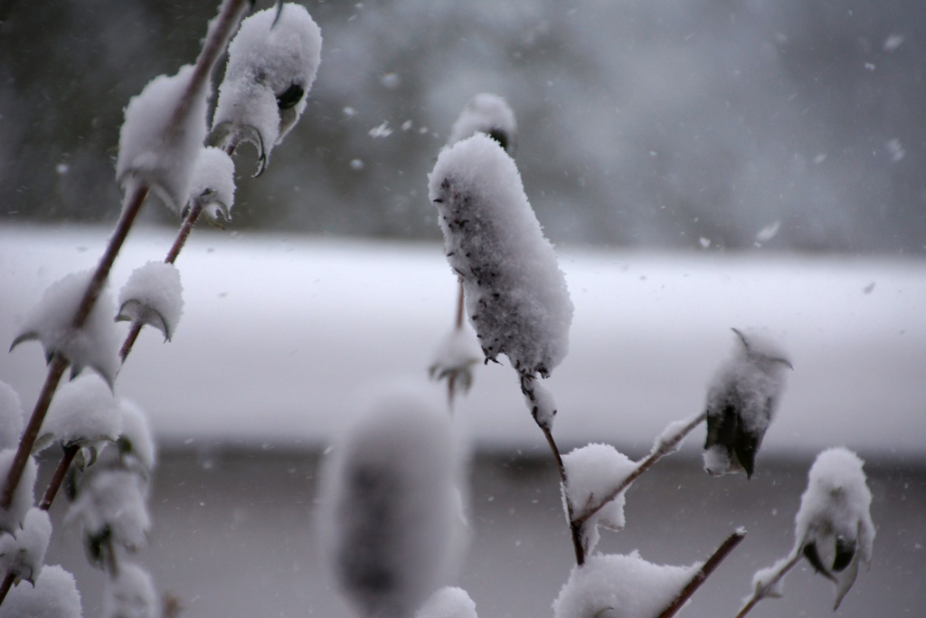 winter-travemuende-schneefall-maerz-2013-andres-lehmann
