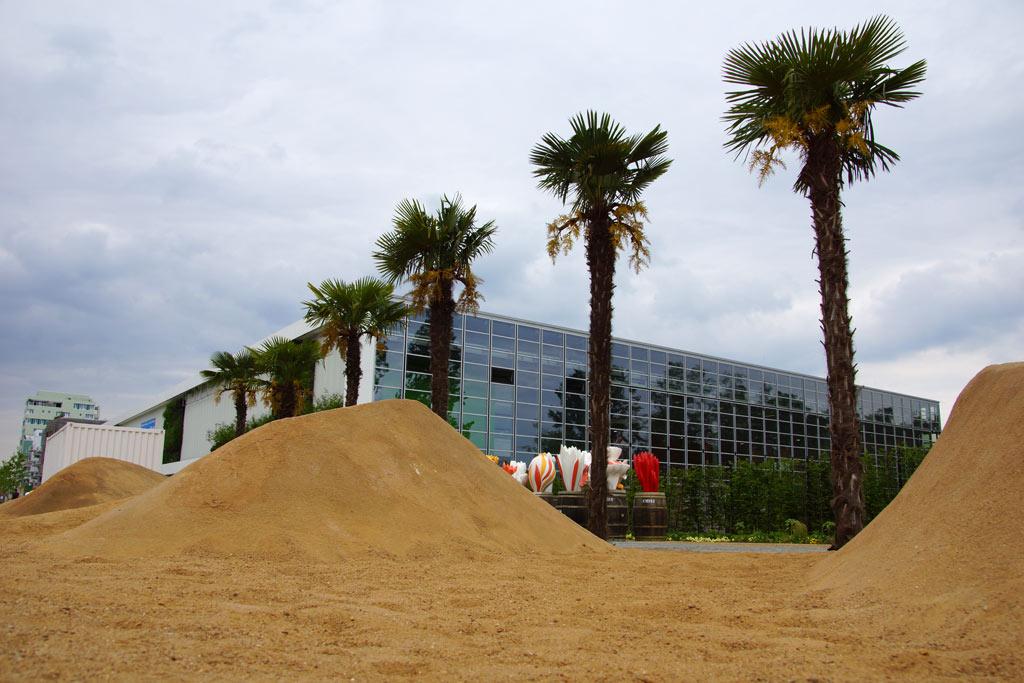 sand-palmen-internationale-gartenschau-hamburg-igs-wilhelmsburg-2013-andres-lehmann