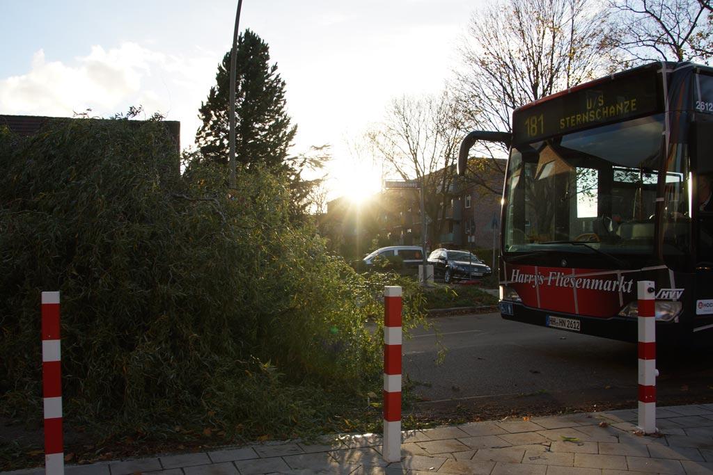 sturm-orkan-tief-christian-lokstedt-baum-bus-181-wendemannoever-2013-andres-lehmann