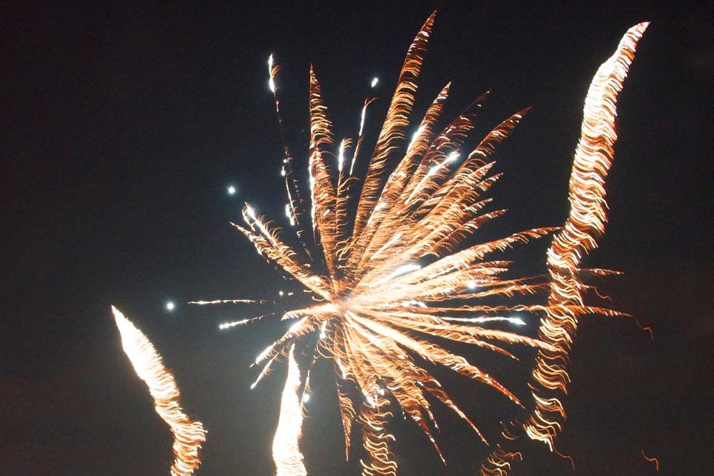 neujahrstag-2014-silvester-feuerwerk-katharina-kubica
