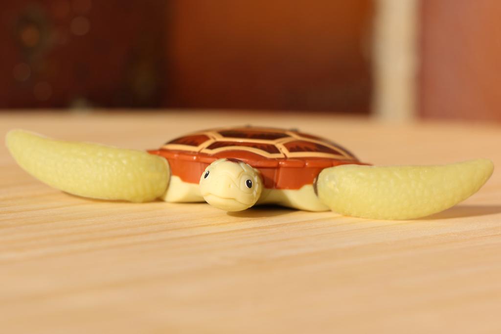 robo-turtle-schildkroete-goliath-spielwarenmesse-2015-andres-lehmann