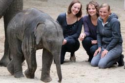 klein-tierpark-hagenbeck-taufe-elefantenbaby-anjuli-pfleger-anjuli-salut-salon-hamburg-2015-andres-lehmann