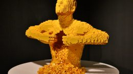 Yellow: Das Gelbe vom Ei | © Frank Burmester